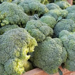 Broccoli 1 pound