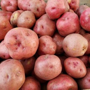Red Potatoes 1 lb