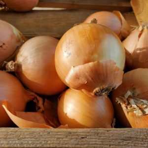 Yellow Onions 1 lb