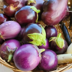 Assorted Eggplant 1 pound