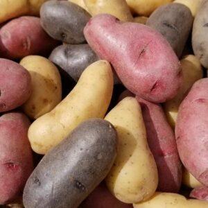 Fingerling Potatoe Mix 1 pound